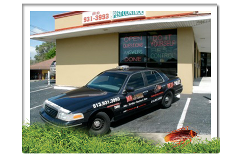 Image Result For Do It Yourself Pest Control Tampa